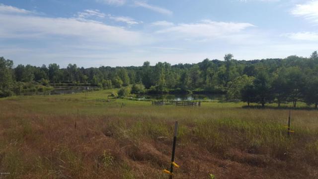 4421 N Lake Road, Lakeview, MI 48850 (MLS #18033007) :: Deb Stevenson Group - Greenridge Realty