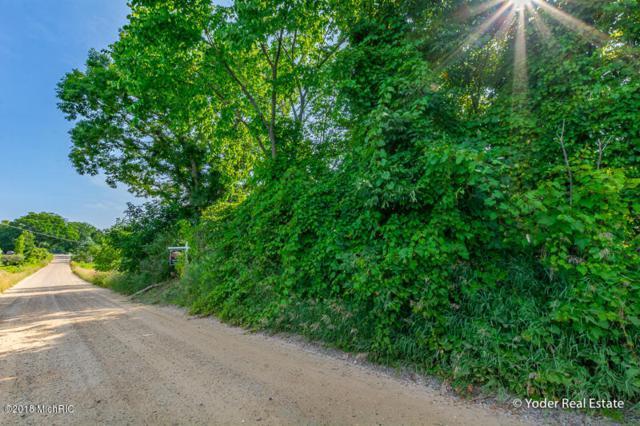 N Johnson Road, Trufant, MI 49347 (MLS #18033261) :: 42 North Realty Group