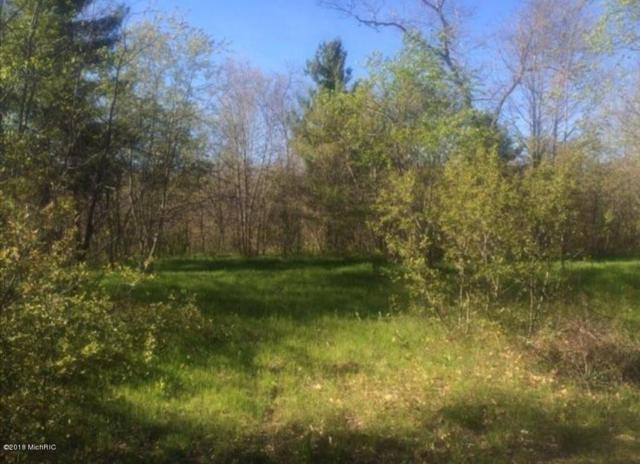10063 N Irons Road, Irons, MI 49644 (MLS #18033328) :: 42 North Realty Group