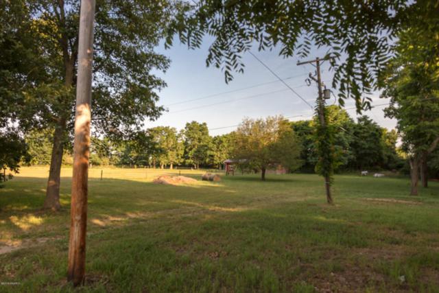 16490 18 Mile Road, Marshall, MI 49068 (MLS #18033373) :: Carlson Realtors & Development