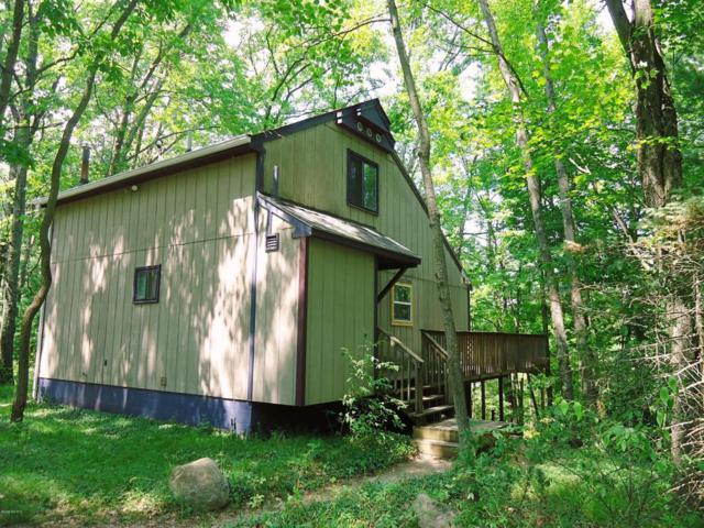 2063 W Lake Shore Drive, Bitely, MI 49309 (MLS #18033487) :: Carlson Realtors & Development