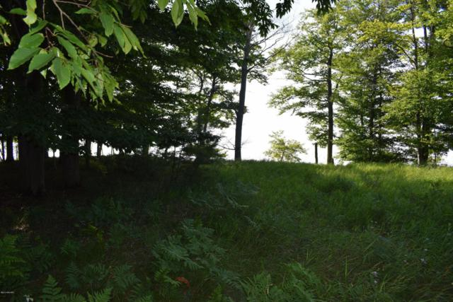 Lot 17 Fox Farm Road #17, Manistee, MI 49660 (MLS #18033562) :: Deb Stevenson Group - Greenridge Realty