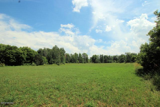 Parcel B 8 Mile Road, Stanwood, MI 49346 (MLS #18033633) :: Carlson Realtors & Development