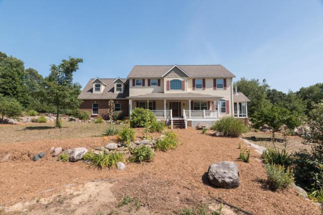 30640 64th Avenue, Lawton, MI 49065 (MLS #18033670) :: Matt Mulder Home Selling Team
