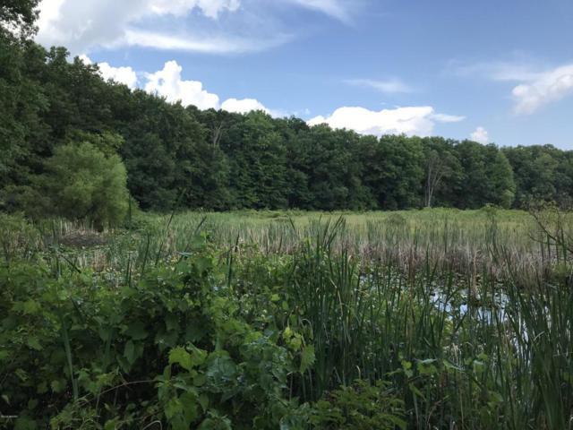 11000 W Holland Lake Road, Gowen, MI 49326 (MLS #18033719) :: Carlson Realtors & Development