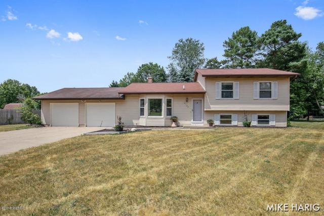 2123 Brook Street, Middleville, MI 49333 (MLS #18033951) :: Carlson Realtors & Development