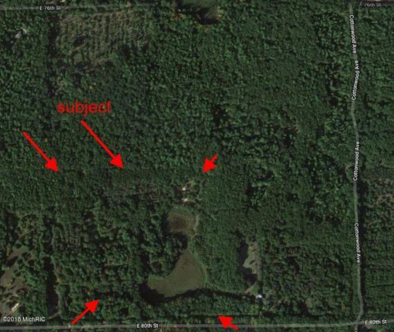 7663 E 80th, Howard City, MI 49329 (MLS #18034172) :: Carlson Realtors & Development