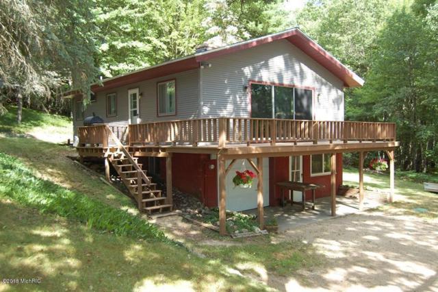 9858 Rising Star, Canadian Lakes, MI 49346 (MLS #18034191) :: Carlson Realtors & Development