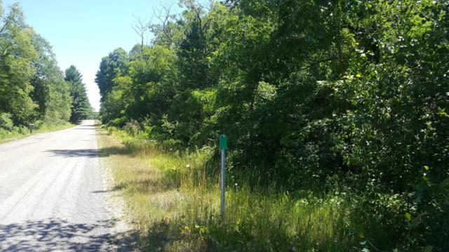 9113 13 Mile Rd. C-3, Mecosta, MI 49332 (MLS #18034318) :: Carlson Realtors & Development