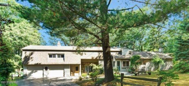 8075 Island View Drive, Newaygo, MI 49337 (MLS #18034643) :: Carlson Realtors & Development