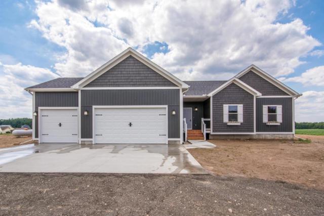 14125 Elm Avenue, Sand Lake, MI 49343 (MLS #18034753) :: Carlson Realtors & Development