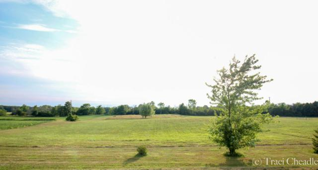 24th Avenue, Marne, MI 49435 (MLS #18034754) :: Carlson Realtors & Development