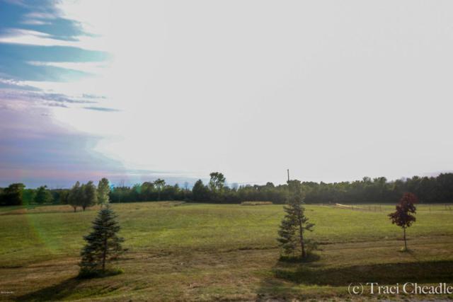 24th Avenue, Marne, MI 49435 (MLS #18034755) :: Carlson Realtors & Development
