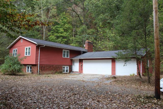 9780 Bluewater Highway, Lowell, MI 49331 (MLS #18034907) :: Carlson Realtors & Development