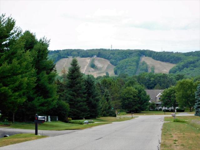 140 Pleasant Valley Drive, Harbor Springs, MI 49740 (MLS #18034969) :: Deb Stevenson Group - Greenridge Realty