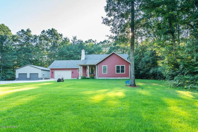 9535 S 88th Avenue, Montague, MI 49437 (MLS #18035641) :: JH Realty Partners