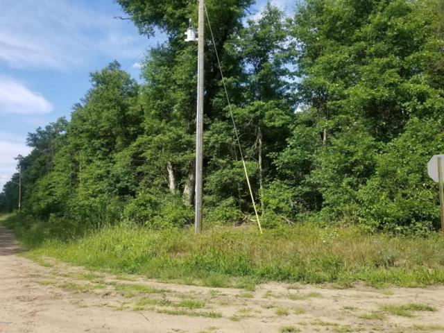 V/L Ft Wayne, Idlewild, MI 49642 (MLS #18035675) :: Carlson Realtors & Development