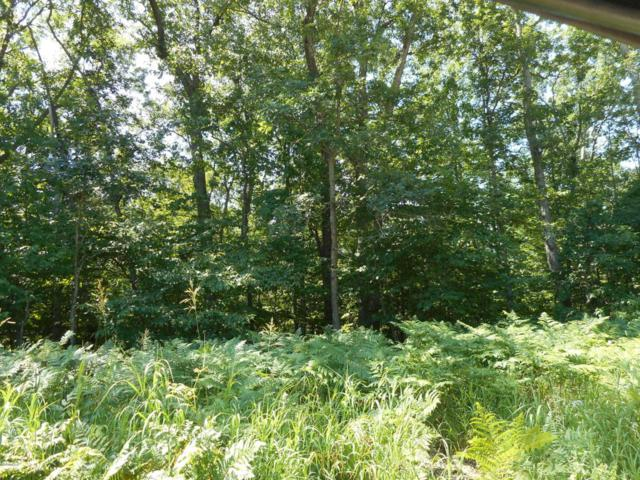 2301 Clay Road, Rothbury, MI 49452 (MLS #18035869) :: Deb Stevenson Group - Greenridge Realty