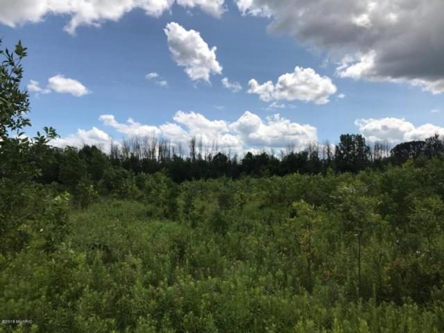 5312 18 Mile Road NE, Cedar Springs, MI 49319 (MLS #18036009) :: Deb Stevenson Group - Greenridge Realty