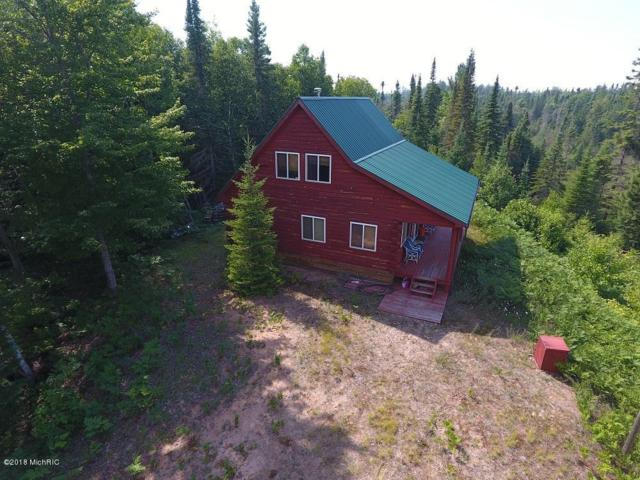 0 V/L W Station South Rd, Paradise, MI 49768 (MLS #18036029) :: JH Realty Partners