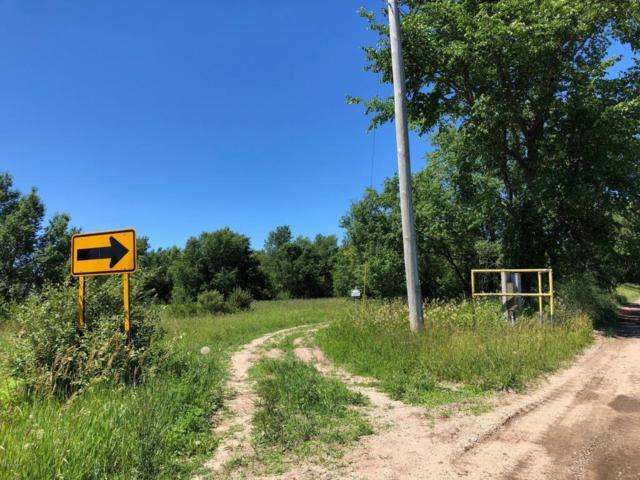 Potter Road 74.95 Acres, Bear Lake, MI 49614 (MLS #18036045) :: JH Realty Partners