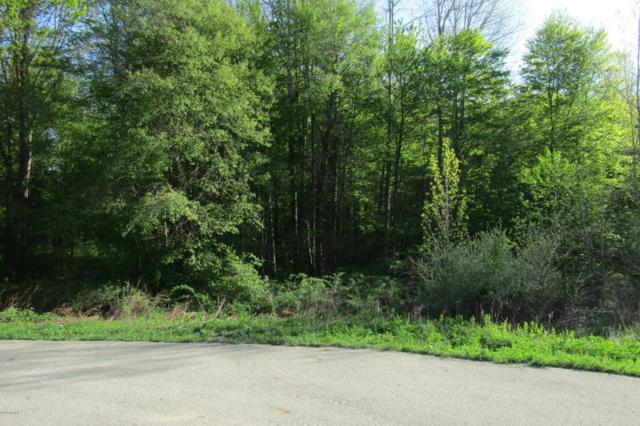 11493 Riverside Drive D, Lowell, MI 49331 (MLS #18036468) :: JH Realty Partners
