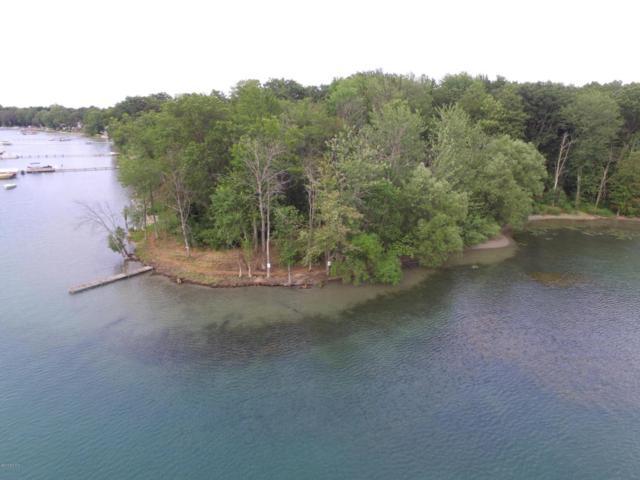 19924 M-60, Three Rivers, MI 49093 (MLS #18036704) :: JH Realty Partners