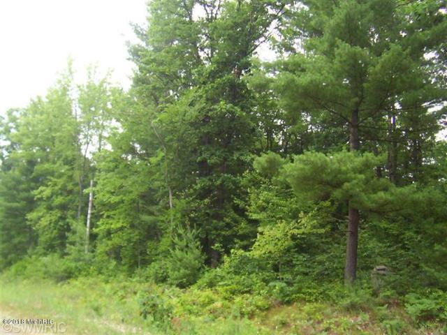 Lot #3 Little Creek, Howard City, MI 49329 (MLS #18037573) :: Carlson Realtors & Development