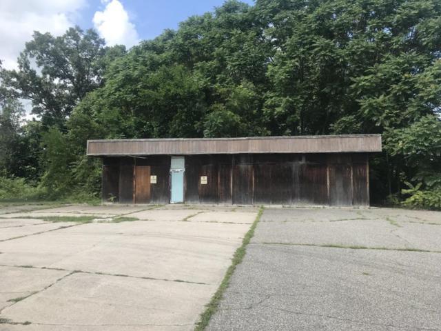 53396 N Main Street, Mattawan, MI 49071 (MLS #18037731) :: Matt Mulder Home Selling Team