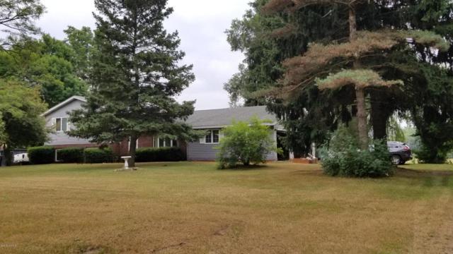 7693 E Jackson Road, Walkerville, MI 49459 (MLS #18037853) :: JH Realty Partners