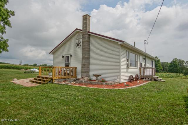 16846 18 Mile Road, Leroy, MI 49655 (MLS #18038903) :: Deb Stevenson Group - Greenridge Realty