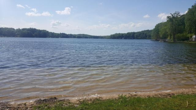 Coon Hollow Road, Three Rivers, MI 49093 (MLS #18039278) :: JH Realty Partners