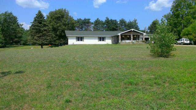 7450 Townline Lake Road, Lakeview, MI 48850 (MLS #18039434) :: JH Realty Partners