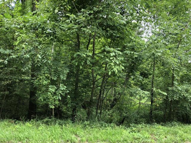 E 0 Roosevelt Road, Holton, MI 49425 (MLS #18039513) :: Deb Stevenson Group - Greenridge Realty