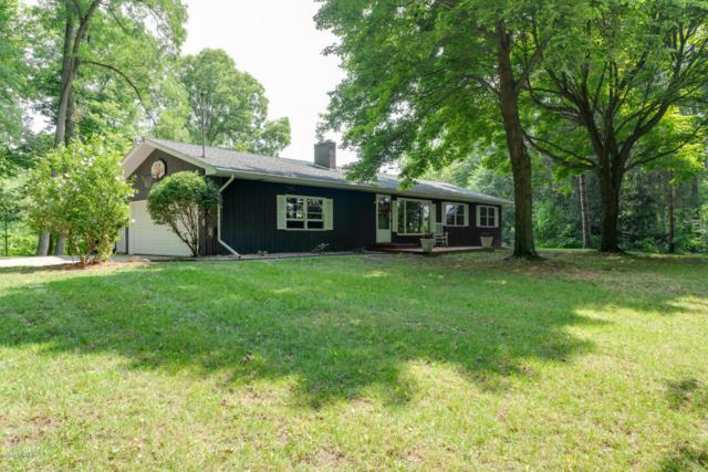 10236 N 10th Street, Plainwell, MI 49080 (MLS #18039603) :: Matt Mulder Home Selling Team