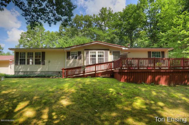 4798 Lake Road, Lakeview, MI 48850 (MLS #18039629) :: Carlson Realtors & Development