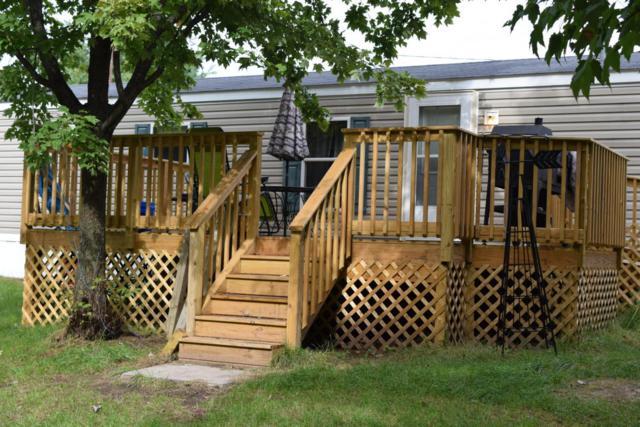 2786 W Lake Road, Hart, MI 49420 (MLS #18039652) :: Carlson Realtors & Development