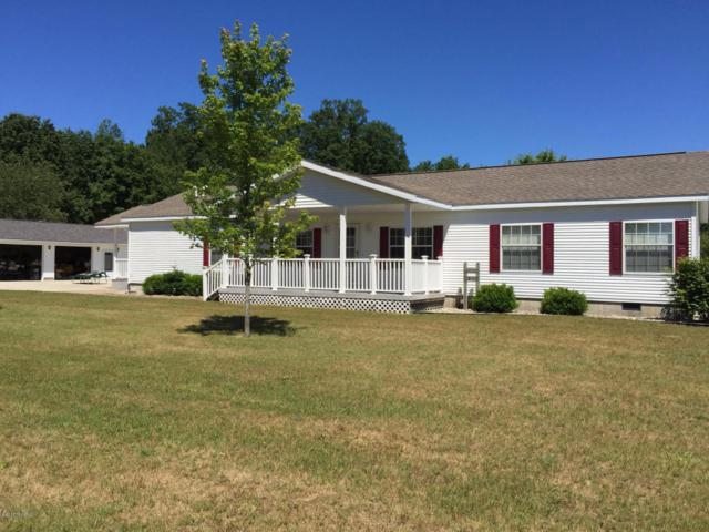 8832 N Johnson Road, Irons, MI 49644 (MLS #18039670) :: JH Realty Partners