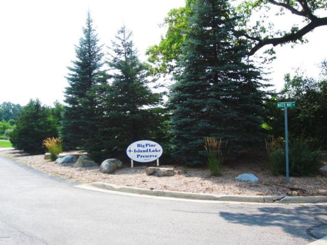 12400 Waterway Lane Lane, Belding, MI 48809 (MLS #18040180) :: Carlson Realtors & Development