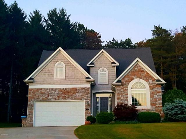 5157 Gila Bend Trail, Kalamazoo, MI 49009 (MLS #18040289) :: Matt Mulder Home Selling Team