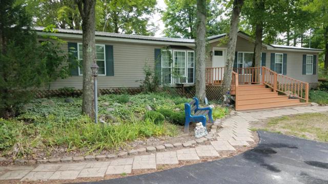 5172 S S. Birch Drive, Barryton, MI 49305 (MLS #18040656) :: JH Realty Partners