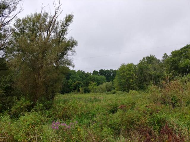 Hemlock Lake Road, Marcellus, MI 49067 (MLS #18040665) :: Carlson Realtors & Development