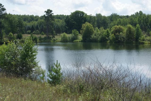 12455 Summerhill Drive, Canadian Lakes, MI 49346 (MLS #18041104) :: JH Realty Partners
