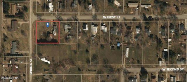 285 W First Street, Vermontville, MI 49096 (MLS #18041595) :: Carlson Realtors & Development