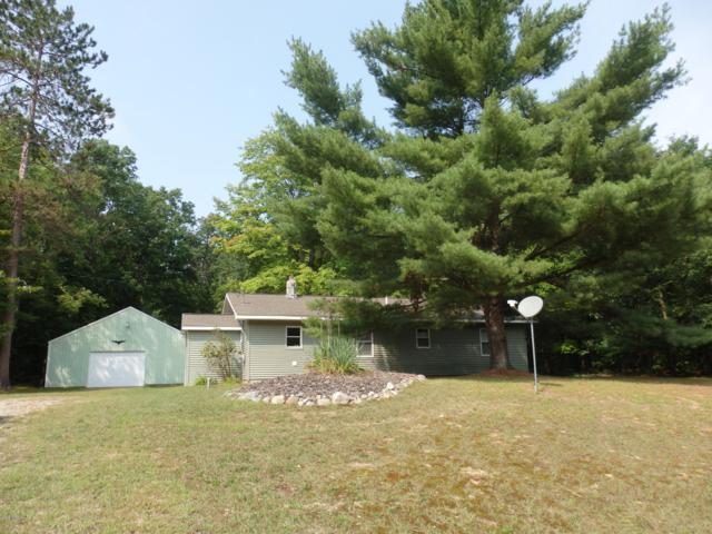 522 Michigan Avenue, Wellston, MI 49689 (MLS #18042194) :: Deb Stevenson Group - Greenridge Realty