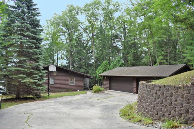 8462 W Canyon Drive, Irons, MI 49644 (MLS #18042209) :: JH Realty Partners