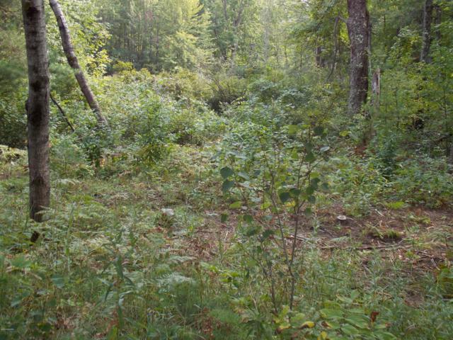 M 137, Interlochen, MI 49643 (MLS #18042389) :: Deb Stevenson Group - Greenridge Realty