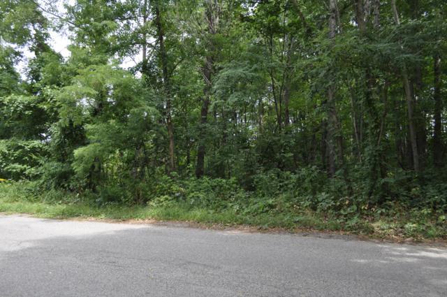 7320 Pine Ridge Drive Ne, Belding, MI 48809 (MLS #18042616) :: Carlson Realtors & Development