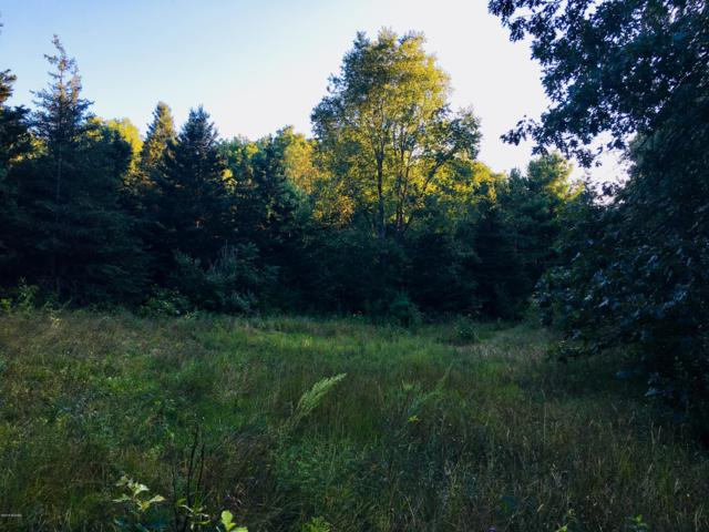 Parcel A W Fenwick Road, Fenwick, MI 48834 (MLS #18042766) :: JH Realty Partners