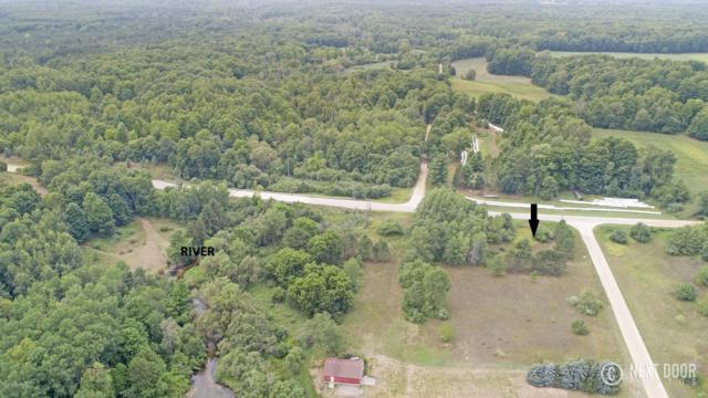 Lot 1 Adams Road, Pentwater, MI 49449 (MLS #18042979) :: Deb Stevenson Group - Greenridge Realty